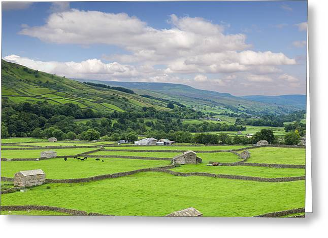 Dry Stone Wall. Greeting Cards - Swaledale Yorkshire Dales England Greeting Card by Colin and Linda McKie