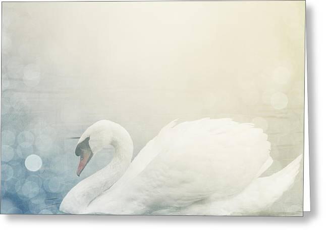 Swan Greeting Card by Jelena Jovanovic