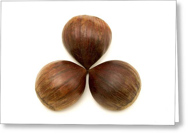 Edible Greeting Cards - Sweet chestnuts fruits Greeting Card by Fabrizio Troiani