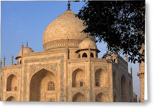 White Marble Greeting Cards - Taj Mahal In Evening Light Greeting Card by Aidan Moran