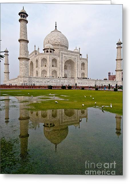 World Destination Photographs Greeting Cards - Taj Mahal Greeting Card by William H. Mullins