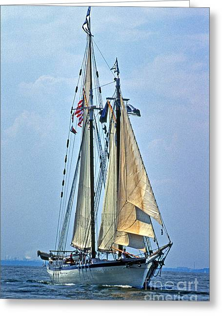 Sailboat Images Greeting Cards - Tall Ship Harvey Gamage Greeting Card by Skip Willits