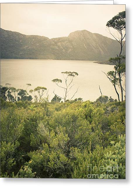 Cradle-mountain Greeting Cards - Tasmania mountain range landscape of Dove Lake Greeting Card by Ryan Jorgensen