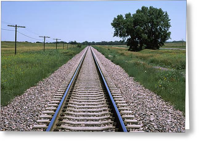 Telephone Poles Greeting Cards - Telephone Poles Along A Railroad Track Greeting Card by Panoramic Images