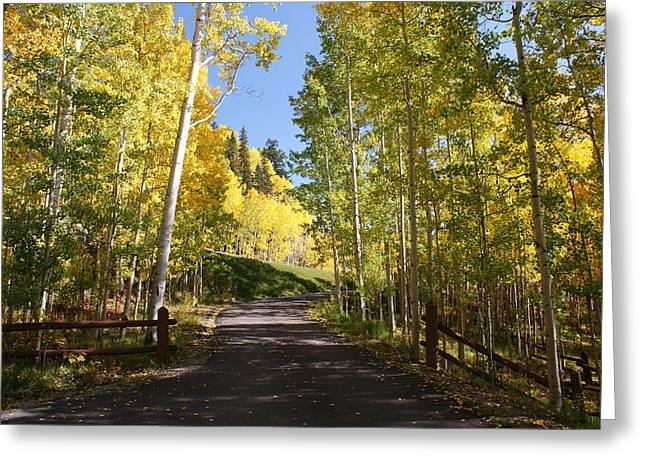 Telluride Colorado Fall Greeting Card by Michael J Bauer