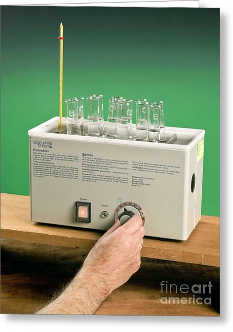 Thermostat Greeting Cards - Test Tubes In A Water Bath Greeting Card by Martyn F. Chillmaid