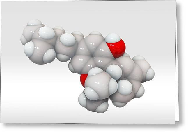 Pain Control Greeting Cards - Tetrahydrocannabinol, molecular model Greeting Card by Science Photo Library