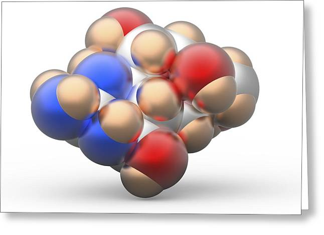 Tetrodotoxin Ttx Neurotoxin Molecule Greeting Card by Alfred Pasieka