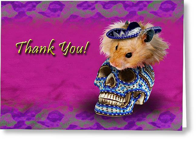 Wildlife Celebration Greeting Cards - Thank You Hamster Greeting Card by Jeanette K