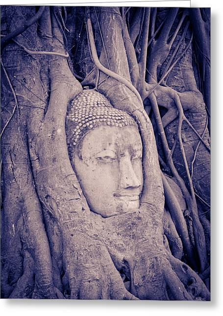 Wat Sculptures Greeting Cards - The ancient city of Ayutthaya Greeting Card by Thosaporn Wintachai