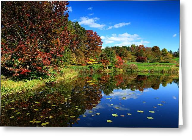 Green Beans Digital Art Greeting Cards - The beautiful fall Greeting Card by Paul Ge