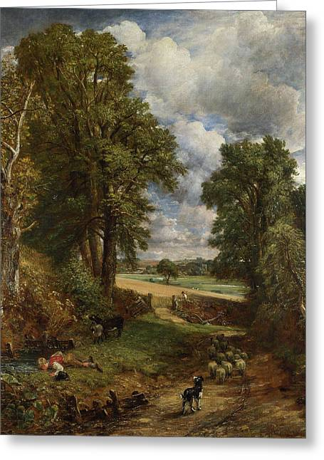 The Cornfield Greeting Cards - The Cornfield Greeting Card by John Constable