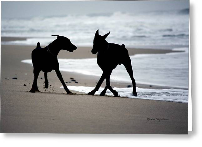 Best Sellers -  - Puppies Photographs Greeting Cards - The Dance Greeting Card by Rita Kay Adams