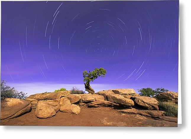 Southern Utah Greeting Cards - The Dreaming Tree Greeting Card by Dustin  LeFevre
