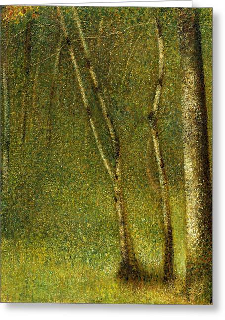 Seurat Greeting Cards - The Forest at Pontaubert Greeting Card by Georges Seurat
