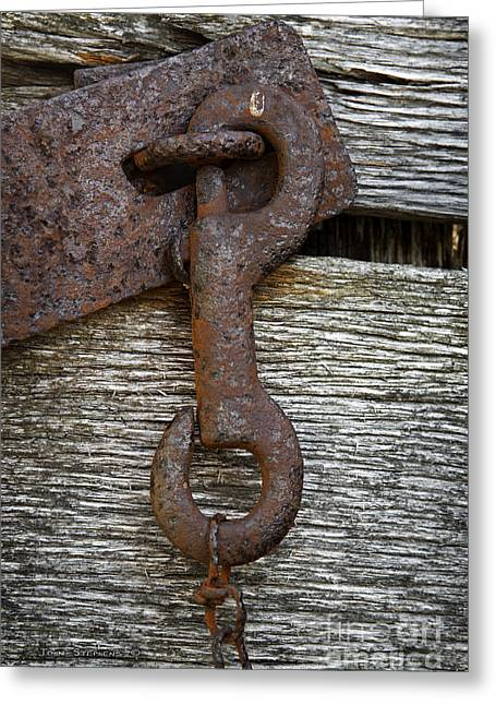 Rusty Metal Greeting Cards - The Guardian Greeting Card by John Stephens