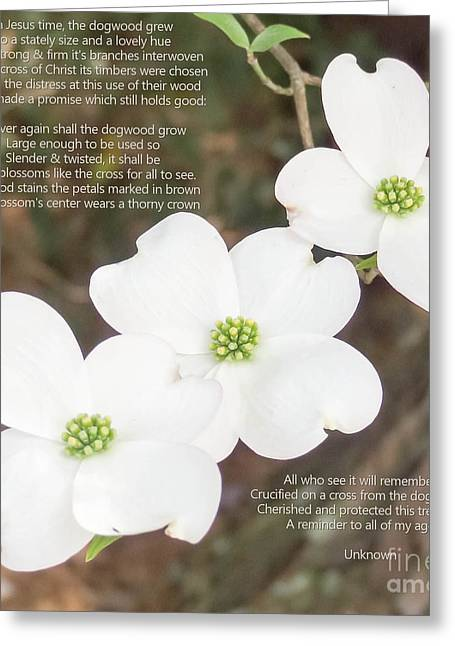 Appreciation Of Art Greeting Cards - The Legend of the Dogwood 2 Greeting Card by Andrea Anderegg