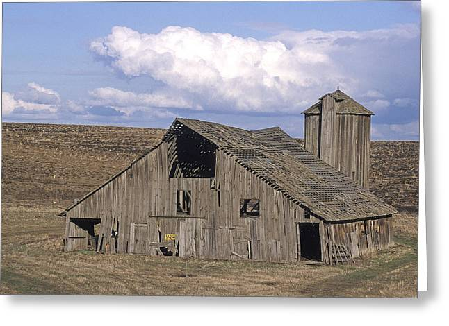 Contour Plowing Greeting Cards - The Lewiston Breaks Barn Greeting Card by Doug Davidson