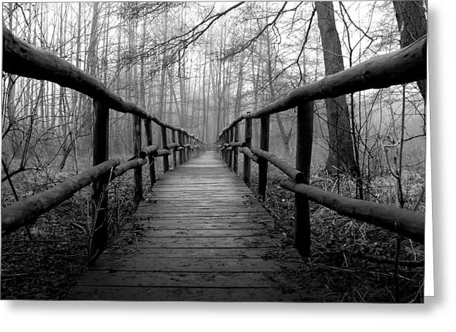 Marsh Path Greeting Cards - The Long Walk Greeting Card by Mountain Dreams