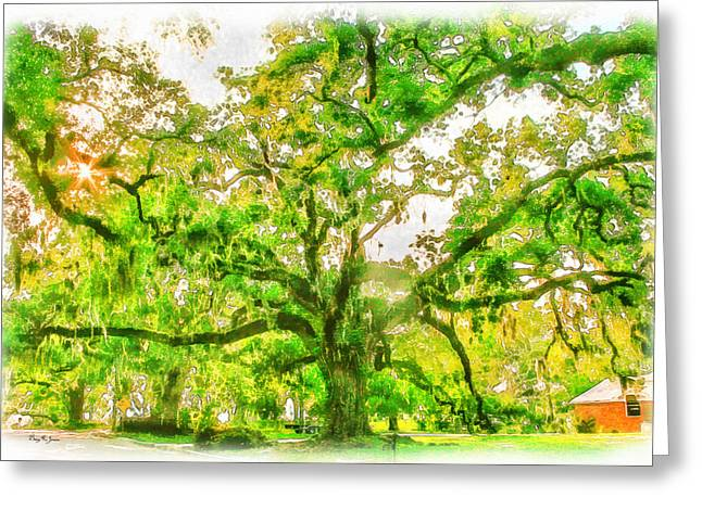 Barry Styles Greeting Cards - Landscape - Tree - The Old Oak Tree Greeting Card by Barry Jones
