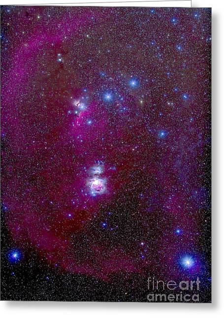 Reflections Of Infinity Greeting Cards - The Orion Nebula, Belt Of Orion, Sword Greeting Card by Alan Dyer