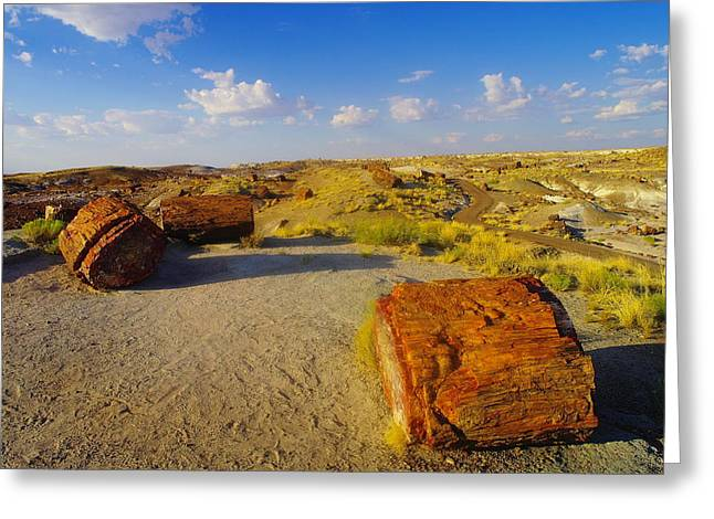 Arizonia Greeting Cards - The Painted Desert Greeting Card by Jeff  Swan