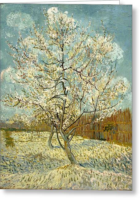 Lawns Fields Greeting Cards - The Pink Peach Tree Greeting Card by Vincent van Gogh