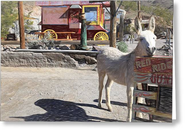 Burro Greeting Cards - The Poser Greeting Card by Donna Kennedy