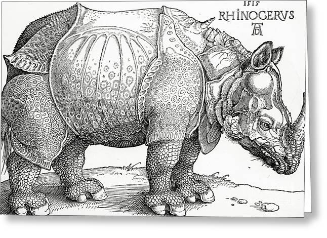 Rhinos Greeting Cards - The Rhinoceros Greeting Card by Albrecht Durer