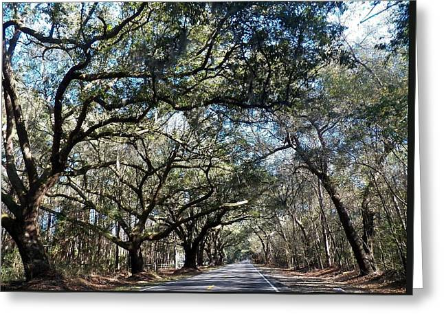 Back Road Greeting Cards - The ride home Greeting Card by Kathleen Golden
