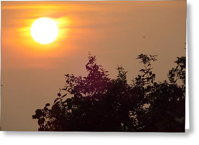 Prashant Ambastha Greeting Cards - The Rising Sun Greeting Card by Prashant Ambastha