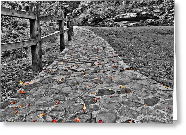 Ahead Greeting Cards - The Stone Path Greeting Card by Bob Mintie