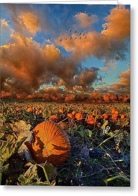 Pumpkins Photographs Greeting Cards - The Survivors Greeting Card by Phil Koch