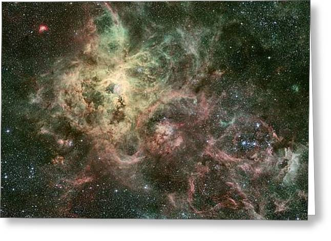 Horsehead Greeting Cards - The Tarantula Nebula Greeting Card by Celestial Images