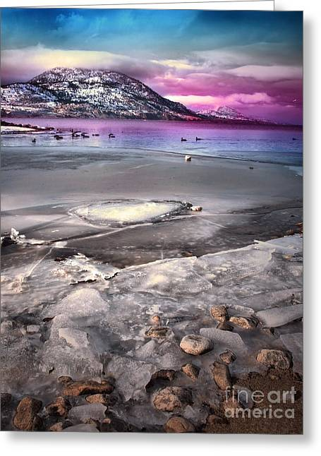 Snow-covered Landscape Greeting Cards - The Thaw Greeting Card by Tara Turner