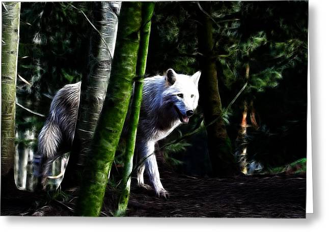 Preditor Greeting Cards - The White Wolf Greeting Card by Steve McKinzie