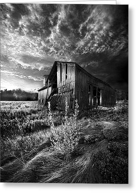 White Farm Greeting Cards - There Was a Time Greeting Card by Phil Koch