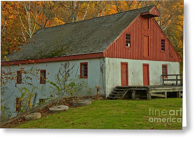 Neely Greeting Cards - Bucks County Thompson Neely Grist Mill Greeting Card by Adam Jewell