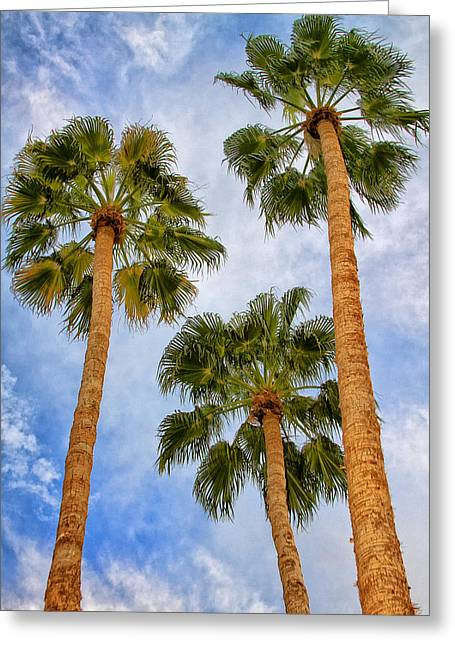 Three Palms Palm Springs Greeting Card by William Dey
