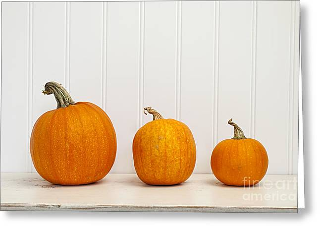 Various Greeting Cards - Three pumpkins Greeting Card by Elena Elisseeva