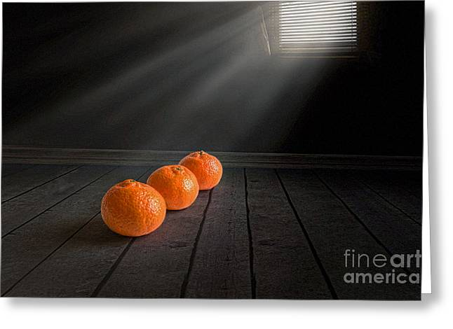 Orange Photos Greeting Cards - Three Greeting Card by Veikko Suikkanen
