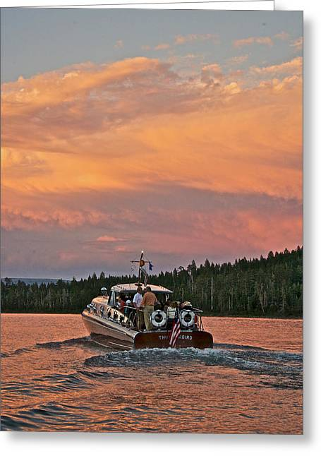 Mahogany Greeting Cards - Thunderbird Sunset Greeting Card by Steven Lapkin