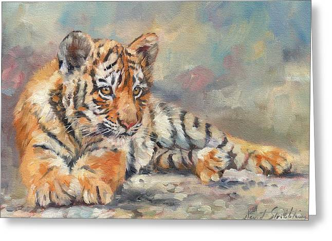 Big Cat Print Greeting Cards - Tiger Cub Greeting Card by David Stribbling