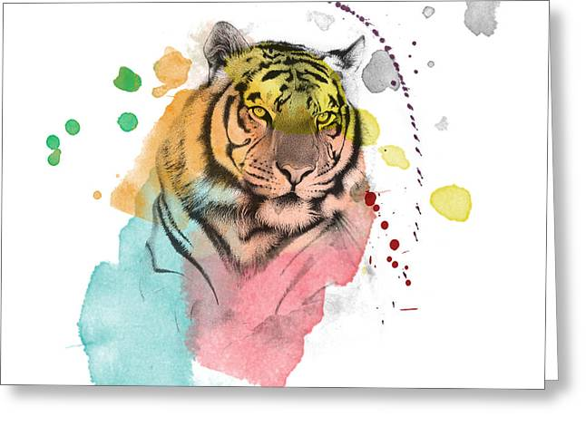 Lion Illustrations Greeting Cards - Tiger 12 Greeting Card by Mark Ashkenazi