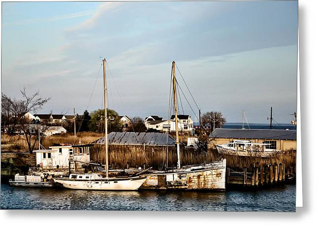 Tilghman Island Maryland Greeting Card by Bill Cannon