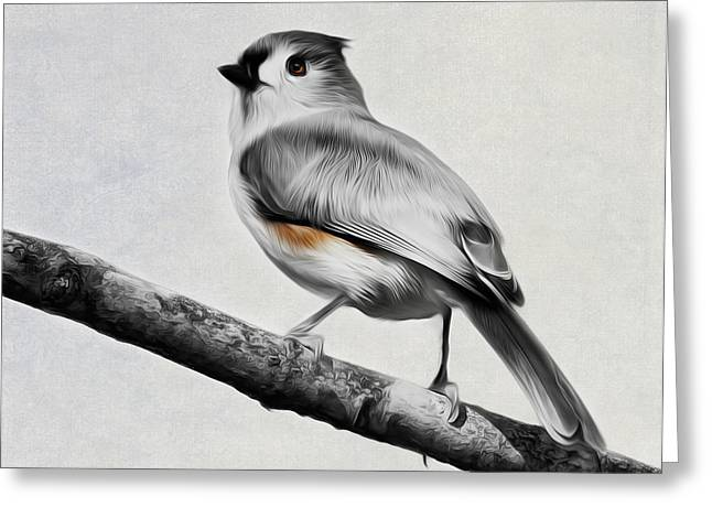 Backyard Wildlife Greeting Cards - Titmouse Greeting Card by Bill  Wakeley
