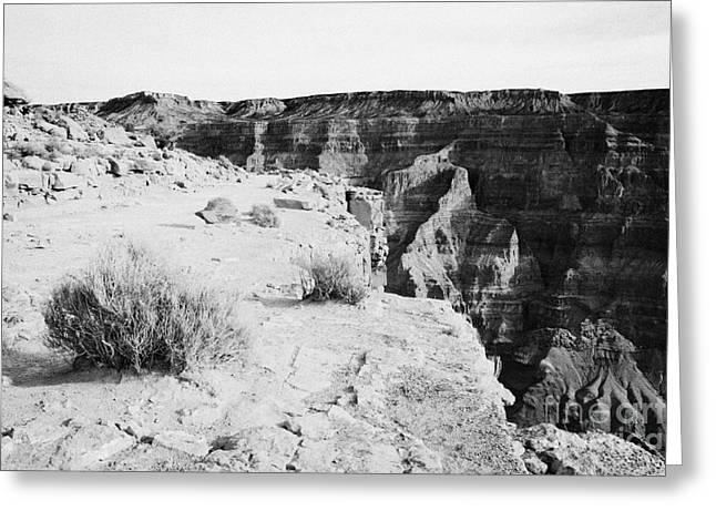 Guano Greeting Cards - top edge of the grand canyona at guano point Grand Canyon west arizona usa Greeting Card by Joe Fox