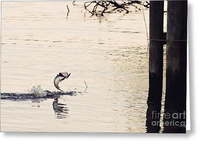 Toledo Bend Greeting Cards - Top Water Explosion Greeting Card by Scott Pellegrin