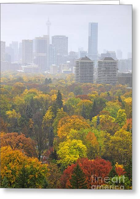 Superstorm Sandy Greeting Cards - Toronto Autumn Fog Greeting Card by Charline Xia