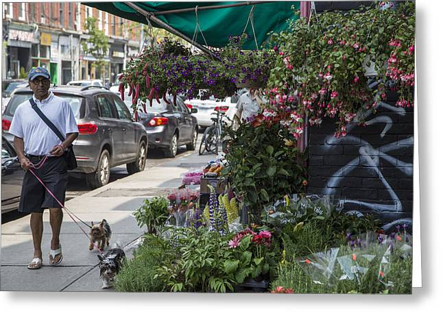 In-city Greeting Cards - Toronto Flower Shop Greeting Card by John McGraw